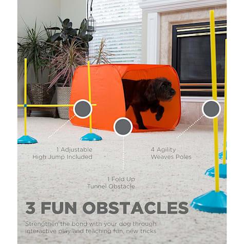 Outward Hound Indoor Dog Agility Kit