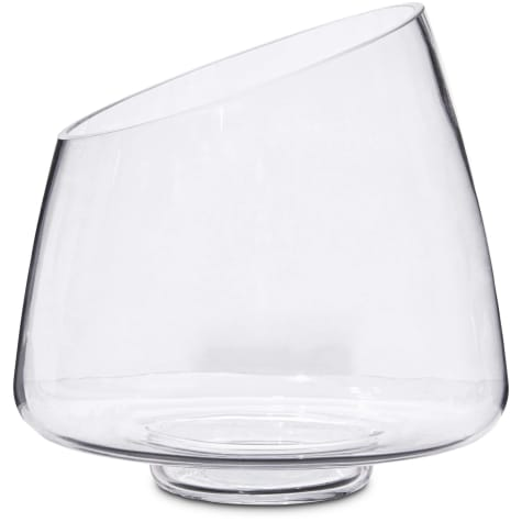 Imagitarium Glass Betta Fish Mantra Tank