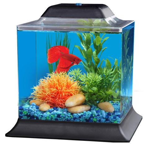 Imagitarium Betta Aquarium