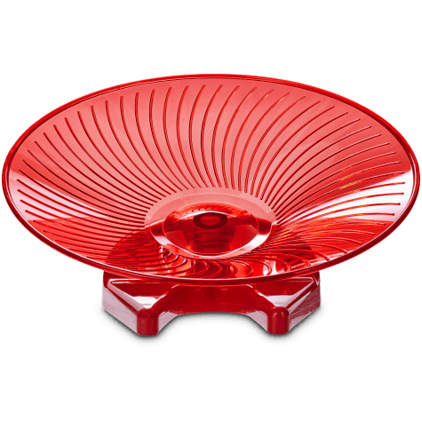 You & Me Exercise Saucer, Large