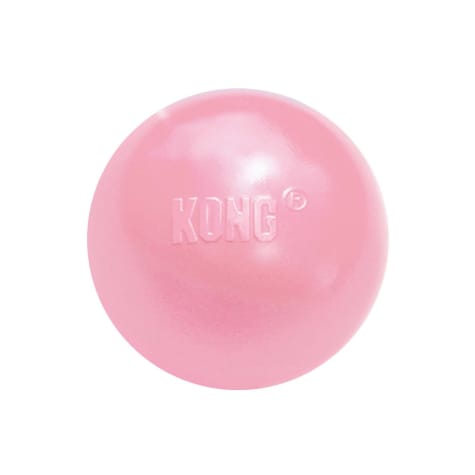 KONG Puppy Ball w/ Hole for Dogs