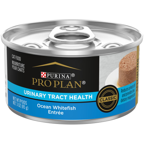 Purina Pro Plan Focus Urinary Tract Health Formula Ocean Whitefish Entree Pate Wet Cat Food