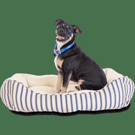 Harmony Blue Striped Nester Dog Bed