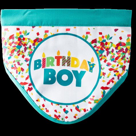 You & Me Birthday Boy Dog Bandana