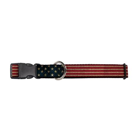 Buckledown Americana Collar