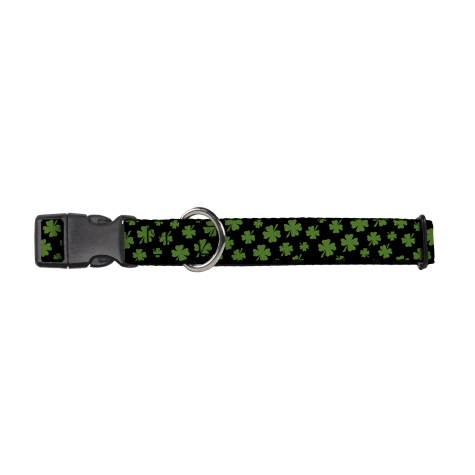 Buckledown Irish Clovers Dog Collar