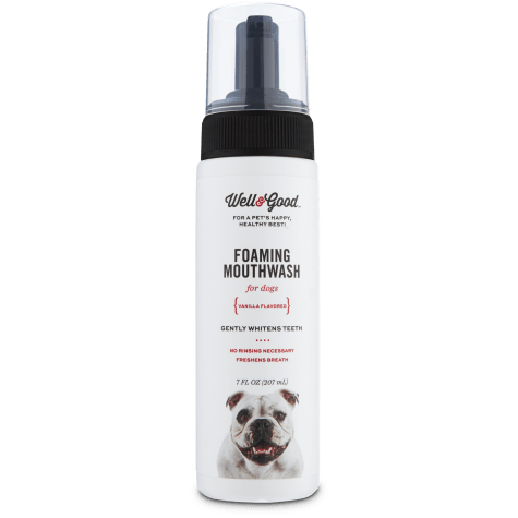 Well & Good Foaming Mouthwash for Dogs