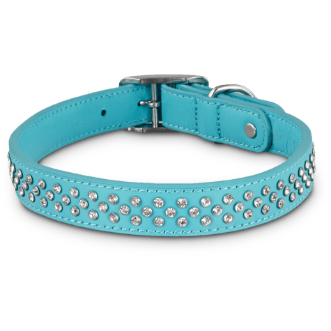 Bond & Co. Leather Bling Turquoise Collar