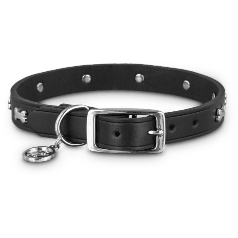 Bond & Co. Black Leather Bone Stud Collar