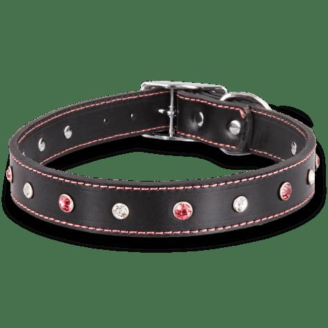 Bond & Co. Pink Jewel Leather Collar
