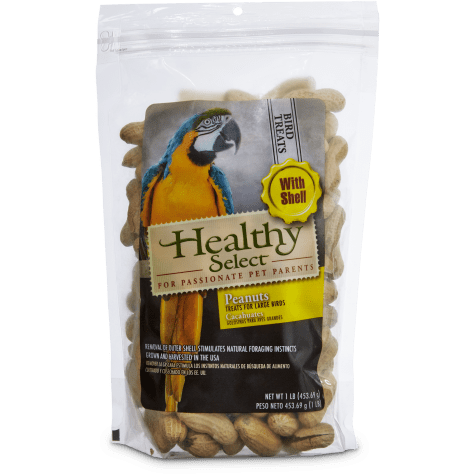 Healthy Select 1LB Peanut in shell