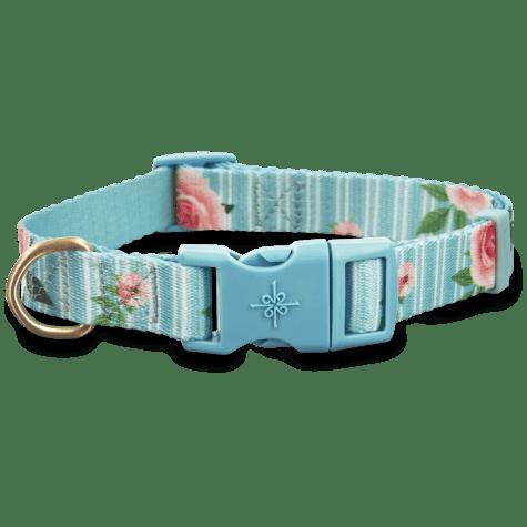 Good2Go Pink Rose Print Dog Collar in Blue