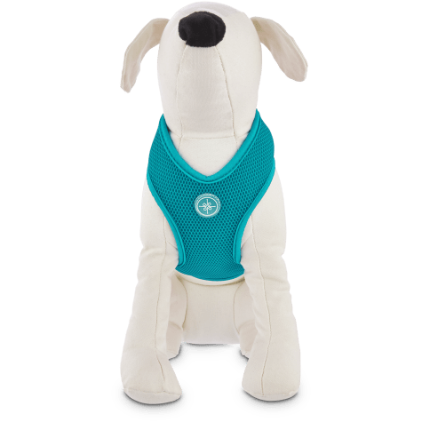 Good2Go Teal Mesh Dog Harness