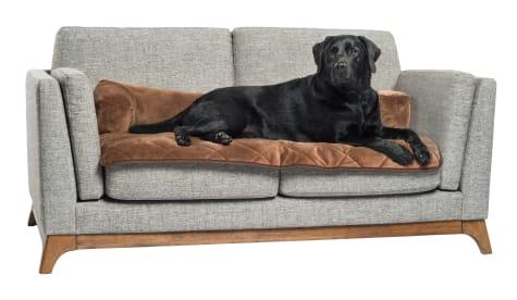 Pet Therapeutics TheraWarm Self-Warming Sofa Bolster and Furniture Protector