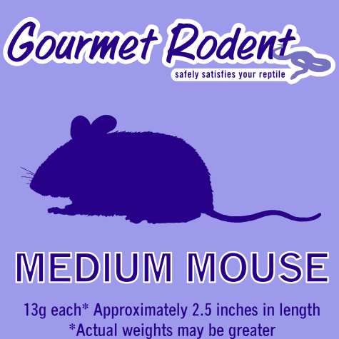 Frozen Medium Mouse