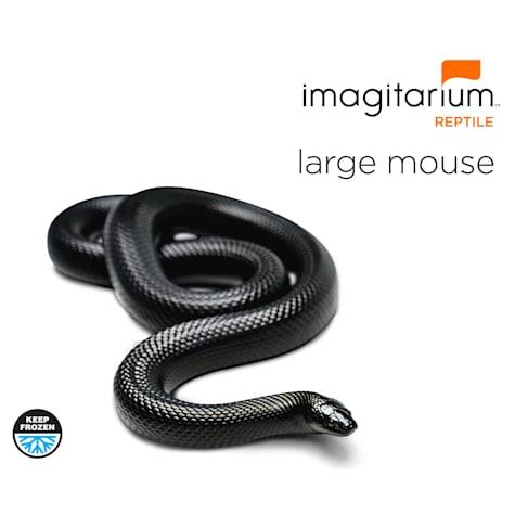 Frozen Large Mouse