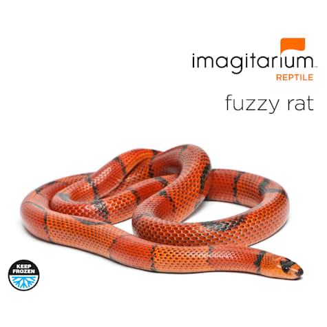 Frozen Fuzzy Rat
