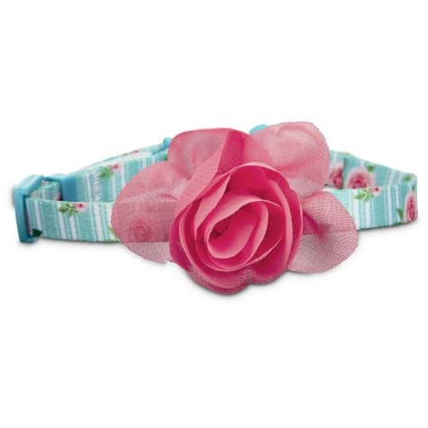 Bond & Co. Pink Rose Print Cat Collar in Blue