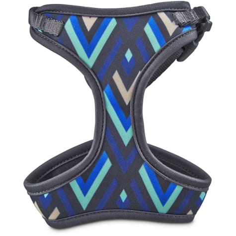 Good2Go Aqua and Blue Chevron Cat Harness and Leash Set