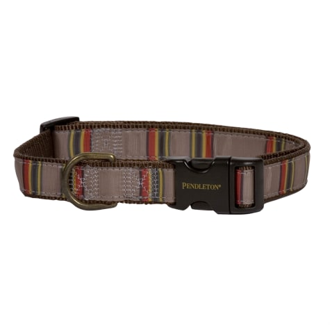 Pendleton Yakima Camp Umber National Park Hiker Dog Collar