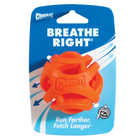 Chuck It! Breathe Right Fetch Ball Dog Toy