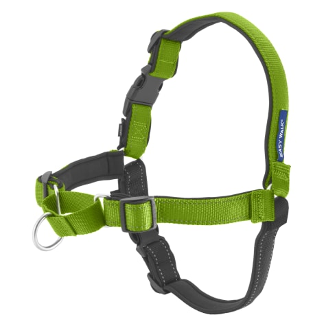 Petsafe Deluxe Easy Walk Harness in Apple