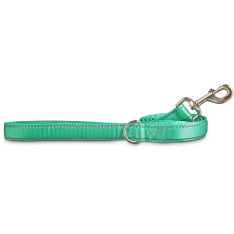 Good2Go Reflective Padded Leash in Turquoise