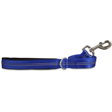Good2Go Reflective Leash in Blue