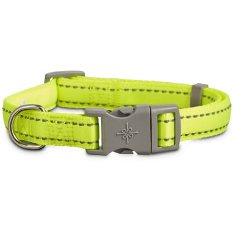 Good2Go Reflective Adjustable Padded Dog Collar in Yellow