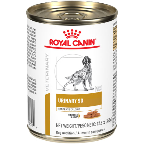 Royal Canin Urinary SO Moderate Calorie Wet Dog Food