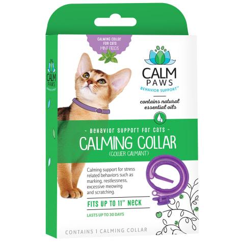 Calm Paws Cat Calming Collar