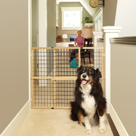 North States MyPet Extra-Wide Wire Mesh Petgate