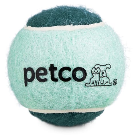 Petco Tennis Ball Dog Toy in Teal