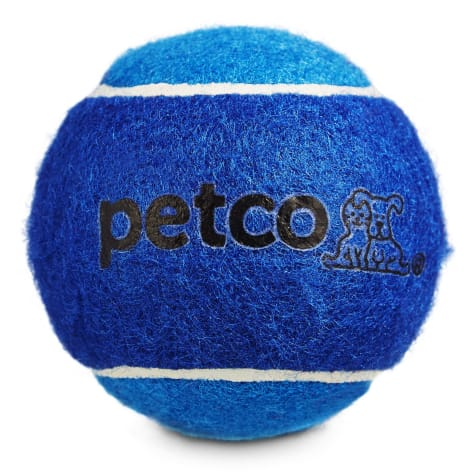 Petco Tennis Ball Dog Toy in Blue