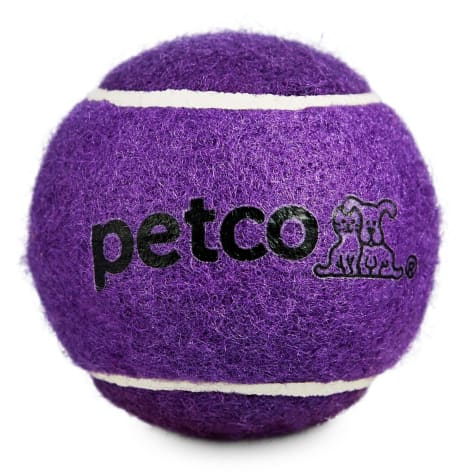 Petco Tennis Ball Dog Toy in Purple
