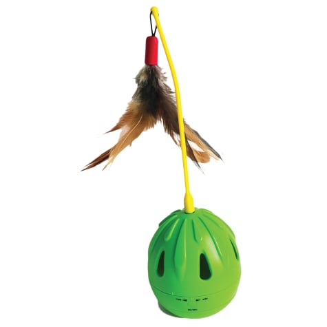 Innovation Pet Kitty Connection Swing Ball Cat Toy