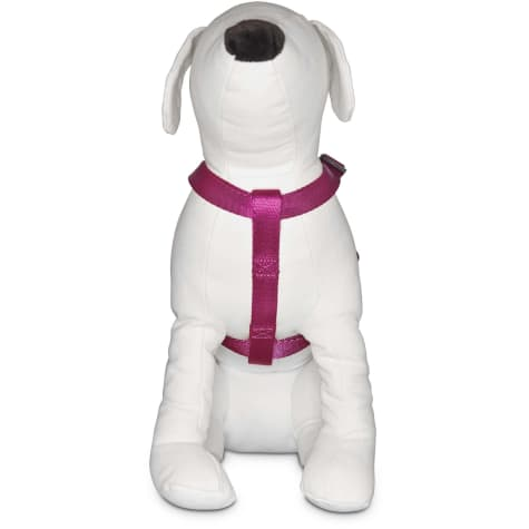 Good2Go Adjustable Berry Dog Harness