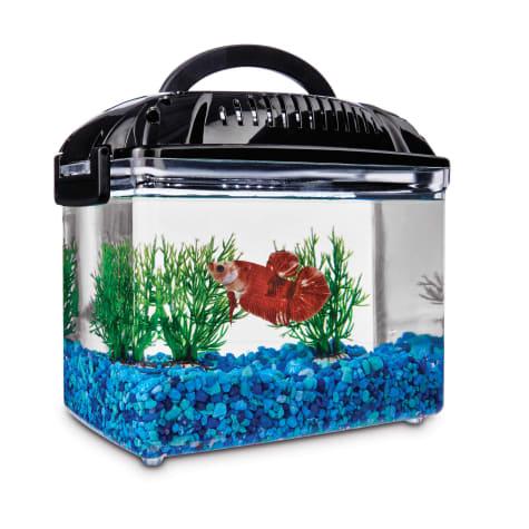 Imagitarium Betta Fish Dual Habitat Tank In Black