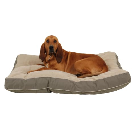 Carolina Pet Rectangular Napper with Berber Top in Sage Canvas with Khaki Cording