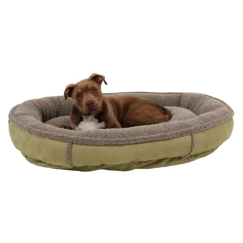 Carolina Pet Faux Suede & Sherpa Comfy Cup in Sage