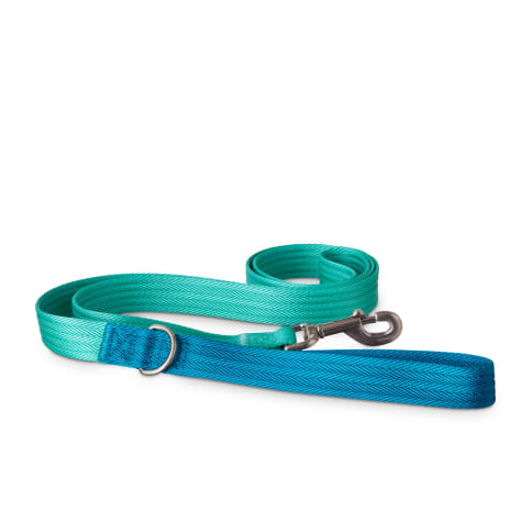 Good2Go Teal and Blue Two Tone Dog Leash