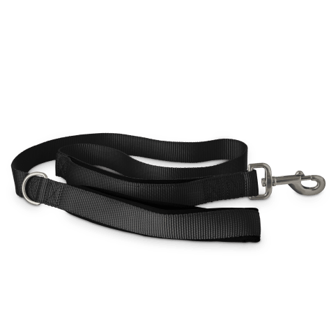 Good2Go Black 2-in-1 Dog Leash, 4 ft.