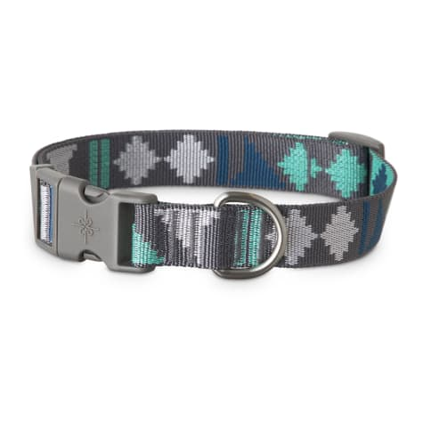 Good2Go Cool Desert Vibes Dog Collar