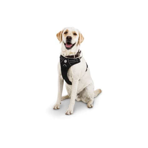 Good2Go Black Front Walking Dog Harness