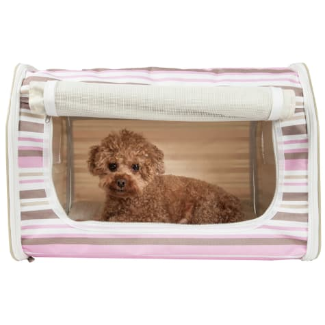 Pet Life, Folding Zippered Lightweight Wire-Framed Easy Folding Pet Crate - Stripe Pattern