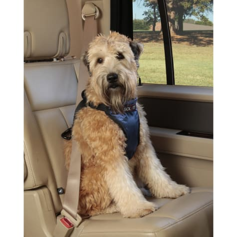 PetSafe Happy Ride Deluxe Safety Harness for Dogs
