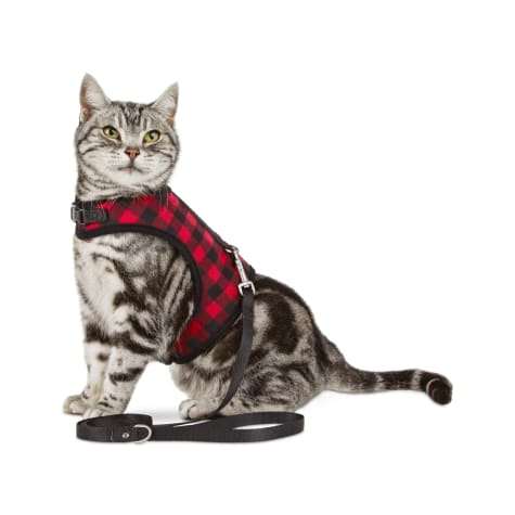Bond & Co. Buffalo-Check Cat Harness and Leash Set