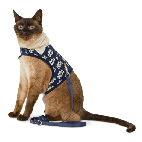 Bond & Co. Kitty and Crossbones Hooded Cat Harness and Leash Set