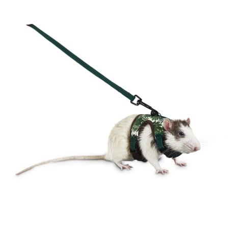 You & Me Tropical Oasis Small Animal Harness and Leash Set