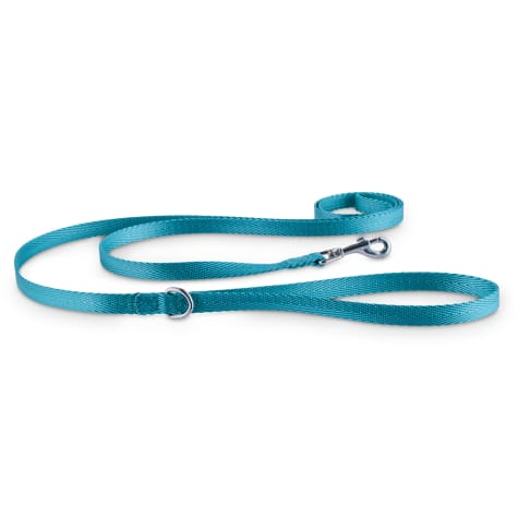 Good2Go Turquoise Nylon Dog Leash, 1/2